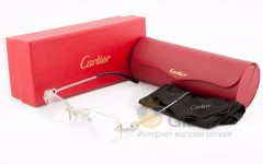 Оправа Cartier 29025 Silver Paris